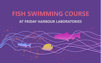 Fish Swimming Course - Summer 2021